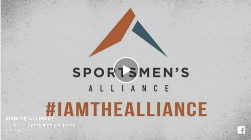 #IAMTHEALLIANCE